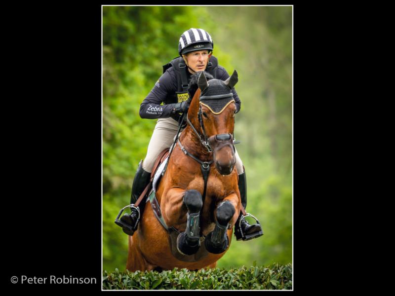 Peter Robinson – 3_Somerford Equestrain_G_19-2